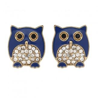 Chubby Owl Stud Blue