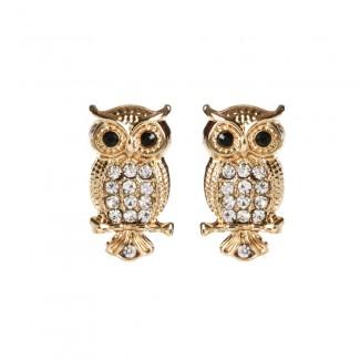 Amrita Owl Studs Gold/Clear